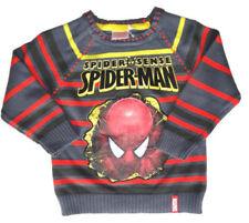 Jungen-Pullover & -Strickwaren Größe 116 Spider-Man mit Rundhals-Ausschnitt