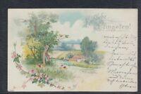 43813) Herrliche Litho AK Fröhliche Pfingsten 1901 Altenburg
