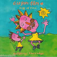 Yr Esgair The RIDGE Cusantan CD New - Welsh Acoustic Music