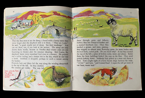 Elsie Few OUT OF DOORS Chatto & Windus NATURE STUDY Aug - Dec School Book