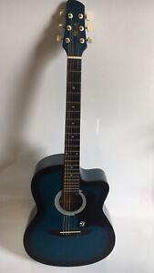 Lindo Acoustic Guitar Blue Case LDG-9 6 String Musical