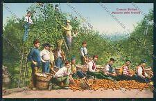 Palermo Costumi Siciliani Alterocca cartolina QQ0801