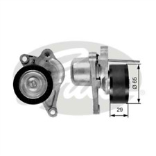 Tensioner Pulley Ribbed for RENAULT MASTER III Box 2.3 dCi 100 FWD