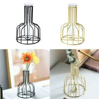 Glass Plant Flower Pot Vase Metal Stand Hydroponic Container Decor Iron Craft