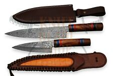 2 piece set of Damascus steel BLADE KITCHEN KNIVES/CHEF KNIVES ROSE WOOD HANDLE