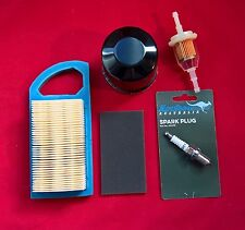 BRIGGS ENGINE SERVICE KIT-  797007 AIR FILTER, OIL AND FUEL FILTERS, SPARK PLUG
