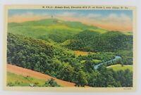 Postcard Linen Bickels Knob Route 5 Elkins West Virginia River Mountains