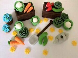 Edible veg vegetable gardening peter rabbit cake topper decorations