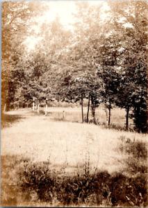 Etang, forêt, arbres Vintage silver print Tirage argentique  8x11  Circa 1