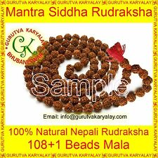 Real Panch Mukhi Nepali Rudraksha Mala 5 Mukhi Five Mukhi Rudraksha Rosary (7MM)
