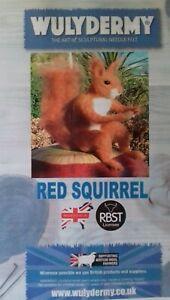 Squirrel Needle Felt Kit British wool LARGE BOXED WULYDERMY