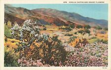 Postcard Cholla Cactus and Desert Flowers