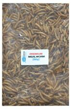 Premium Freeze Dried Mealworm Tropical Fish Food - Cichlid etc [50g]