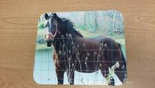 Horse Mouse Pad - Horse with Fall Colors