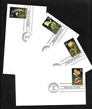 US FDC 2001 Carnivorous Plants 4 Covers Uncacheted Unaddressed Venus Flytrap |
