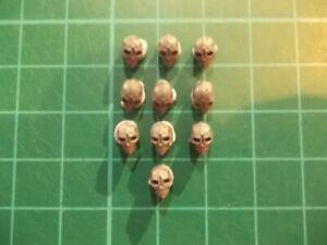 Warhammer 40K - 10 Tau skulls Base decor - 40k bits