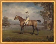Portrait of a Racehorse, Possibly Disguise George Garrard Pferde B A1 02003