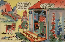 Curt Teich Hillbilly Comic Man & Wife Shack Welcome Mat Postcard