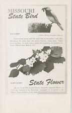 MO * Missouri State Bird & Flower RPPC ca. 1940 * Blue Bird  Hawthorne