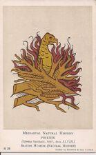 Phoenix, Fantasy, Medieval Natural History, 1920s, British Museum London 1491