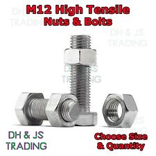 M12 Set Screws Bolts And Nuts High Tensile 8.8 Full Thread Zinc Plated Setscrews
