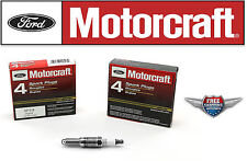 8 Motorcraft Spark Plug SP514 SP537 with Dielectric Grease & Anti-Size Lubricant