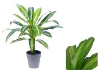 50cm Artificial Dracaena Plant w/ Pot Green Fake Foliage Home Decor Office Tree