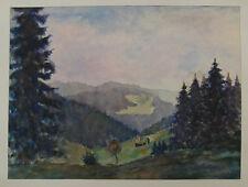 H.W.Mund; Im Schwarzwald bei Triberg