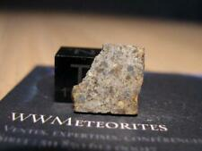 New listing Meteorite Nwa 8602 - Fresh Ll4 endcut with nice chondrules