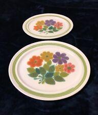 Vintage Franciscan Earthenware Set of 2 Oval Serving Platters