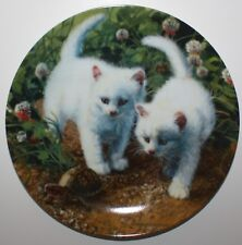 A Chance Meeting White Shorthairs Brackenbury Cat Plate COA Orig Box Knowles