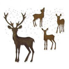 Sizzix Thinlits Die Set 5PK - Winter Wonderland - 662426