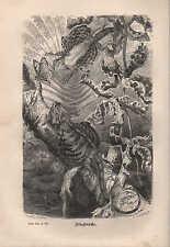 Lithografie 1878: FLUGDRACHE.