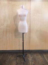 Alabaster Tinted Plastic Mannequin