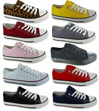 LADIES FLAT CASUAL COMFY FESTIVAL CANVAS PLIMSOLLS WOMENS TRAINERS SHOES SZ 3-8
