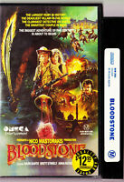 Bloodstone RARE 1988 VHS Starring Brett Stimely Anna Nich VHS VIDEO TAPE VINTAGE