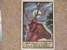 How would You Like to be an ELK, by the Ullman Co., Used vintage card