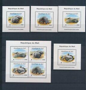 XC57940 Mali WWF porcupine fauna wildlife sheets MNH