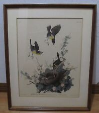 Lithograph Yellow Breasted Chat By J.J AUDUBON. The F.H. Bresler Gallery