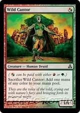 WILD CANTOR Guildpact MTG Red/Green Creature — Human Druid Com