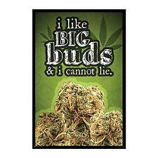 BIG BUDS - WEED POSTER - 24x36 MARIJUANA SMOKING POT 10950
