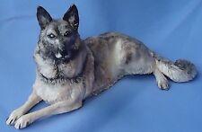 "Norwegian Elkhound Keeshond Eve Pearce England 9"" Australian Shepherd Dog"