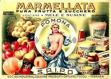 Original vintage print MARMELLATA POMONA ITALIA c.1930 Label