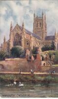 Postcard - Worcester Cathedral.     (Ref A20)