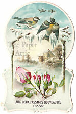 Birds Snow Scene & Pink Roses Antique French Die Cut Chromo Trade Card