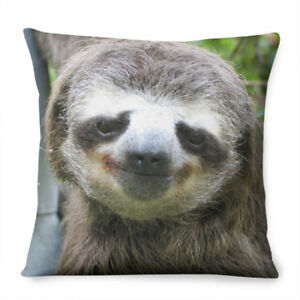 Sloth Face CUSHION Bedroom Kids Funny Joke Lazy Interior Decor Animal Cute Pet