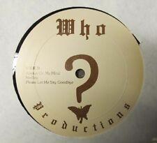 Vintage Vinyl Dept.: Mystery album here:  Who? Productions LP - disco?