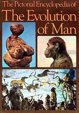 Evolution Man Picture Encyclopedia Neanderthal Boisei Habilis Robustus Africanus