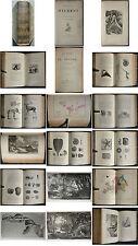 FIGUIER LA TERRE AVANT LE DELUGE préhistoire + ALCOFRIBAS HISTOIRE PIERROT 1865