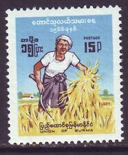 Burma 1966 SC 193 MNH Farmer